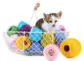 Cute little kitten in basket with thread isolated on white — Stockfoto
