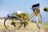 Bicycle near lake during sunset — Foto Stock