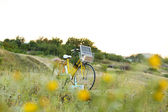 Bicycle in meadow during sunset  — Stockfoto