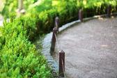 Walkway in green park — Stock Photo