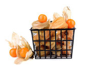 Physalis fruits in plastic basket, isolated on white  — Stock Photo
