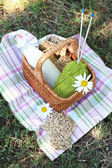 Tasty snack in basket on grassy background for spending nice weekend in a park — Stock Photo