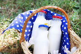 Tasty snack in basket on grassy background for spending nice weekend in a park — Foto Stock