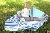 Tasty snack in basket on grassy background for spending nice weekend in a park — Stockfoto