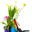Beautiful spring flowers, soil and tools isolated on white — Stock Photo #9470852