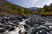 Stream at the Altai mountains — Stock Photo