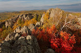 Fall at Urals — Stock Photo