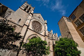 Cathedral Saint Pierre in Montpellier — Stock Photo