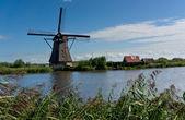 Windmill in Kinderdijk — Stockfoto