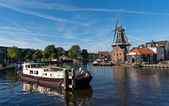 Windmill in Haarlem — Stock Photo