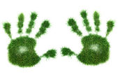 Green leaves hand — Stock Photo