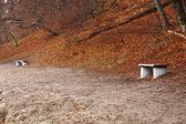Autumn park bench — Stock Photo