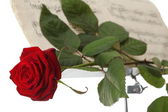 Red rose and old notes Sheet music — Stock Photo