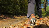 Man walking cross country trail in autumn forest — Stock Photo