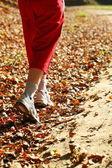 Donna che cammina croce paese sentiero nella foresta d'autunno — Foto Stock