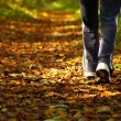 Stock Photo: Womwalking cross country trail in autumn forest