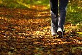 Woman walking cross country trail in autumn forest — Stock Photo