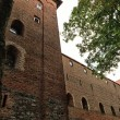 Poland old castle Nidzica — Stock Photo #21327687