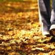 Woman walking cross country trail in autumn forest - Stockfoto