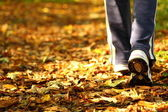 Woman walking cross country trail in autumn forest — Stok fotoğraf