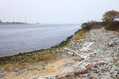 Landscape with sea Poland — Stock Photo