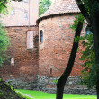 Poland old castle Nidzica — Stock Photo #22387565