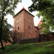 Poland old castle Nidzica — Stock Photo #24850907