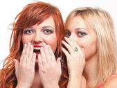 Society gossip - two happy young girlfriends talking white backg — Stock Photo
