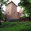 Poland old castle Nidzica — Stock Photo #25157205