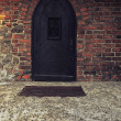 Old Wooden Door on Grunge Brick Wall — Stock Photo