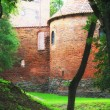 Poland old castle Nidzica — Stock Photo #28135811