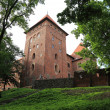Poland old castle Nidzica — Stock Photo #28602165