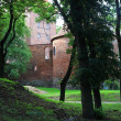 Poland old castle Nidzica — Stock Photo #30571347