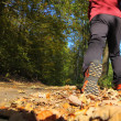Man walking cross country trail in autumn forest — Foto Stock