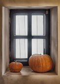 Two pumpkins on the window sill — Stok fotoğraf