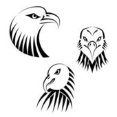 Set Eagles Heads — Stock Vector