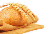 Bread with ears of wheat — Stock Photo