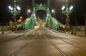 The Freedem bridge in Budapest — Stok fotoğraf