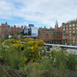 High line park in New York — Lizenzfreies Foto
