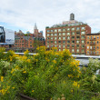 High line park in New York — Stock Photo
