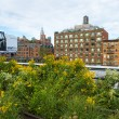 Stock Photo: High line park in New York