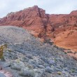 Red Rock canyon , Nevada. — Stock Photo #20531033