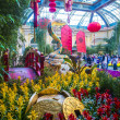 Bellagio Hotel Conservatory &amp; Botanical Gardens - Stock Photo