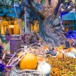 Stock Photo: Bellagio Hotel Conservatory & Botanical Gardens