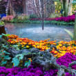 Bellagio Hotel Conservatory & Botanical Gardens - Stock Photo
