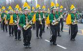Chicago saint patrick parade — Stockfoto