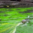 Stock Photo: Chicago River dyed green