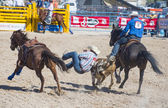 Helldorado days rodeo — Stock Photo