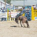 Helldorado days rodeo — Stock Photo #27900997