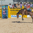 helldorado days rodeo — Stock Photo #27901013
